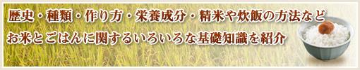 歴史・種類・作り方・栄養成分・精米や炊飯の方法などお米とごはんに関するいろいろな基礎知識を紹介